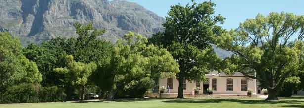 Cape Town Wine Tasting at Boschendal